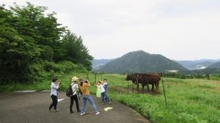牛さんに会えるかな