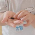 Thumbnail of post image 080